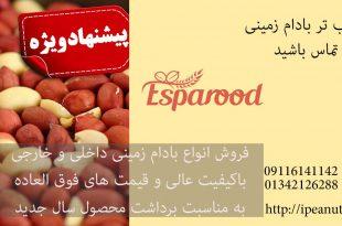 فروش بادام زمینی خارجی